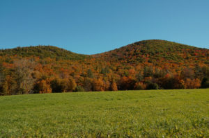 western-slope-of-the-mount-peak-ridge-hawley-ma